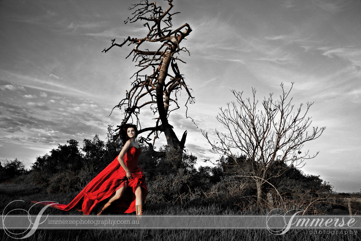 Genelle S Gallery Immerse Photography