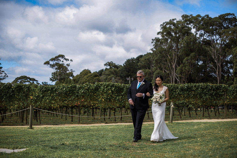 Montalto Weddings, Mornington Peninsula Weddings, Toast Magazine, Immerse Photography, Winery Wedding, Wedding Dress, Hello Blossoms, Wedding Flowers, Anna Campbell Couture, Winery Ceremony, Groom Prep, Groom, Groomsman