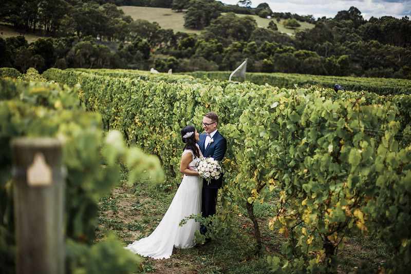 Montalto Weddings, Mornington Peninsula Weddings, Toast Magazine, Immerse Photography, Winery Wedding, Wedding Dress, Hello Blossoms, Wedding Flowers, Anna Campbell Couture, Winery Ceremony,