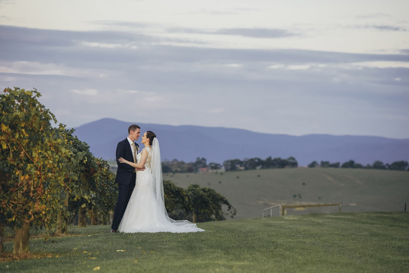Vue on Halcyon Wedding Photography, Vue on Halcyon Wedding Photographer, Vue on Halcyon Weddings, Vue Weddings, Vue Wedding Photographer, Yarra Valley Wedding Photographer, Valley Loves