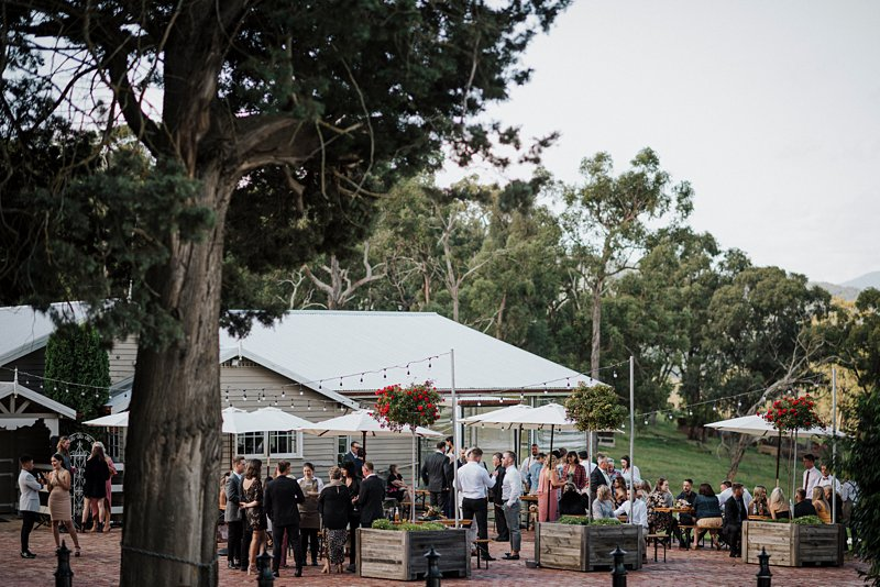 Wandin Park Estate wedding, Farm Wedding, Pre-dinner Canapes, Essential Catering